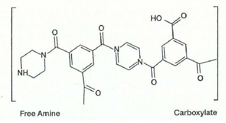 ساختار شیمیایی یک غشاء نانوفیلتراسیون