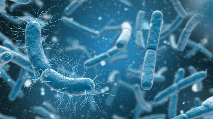آلودگی میکروبی آب آشامیدنی