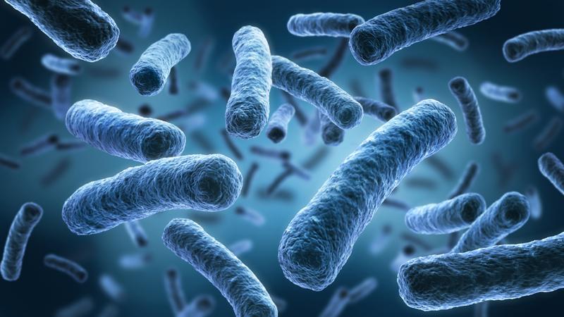 ویژگیهای میکروبی آب آشامیدنی سالم